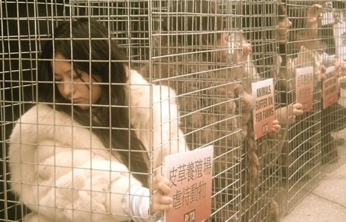 Girls in Cages