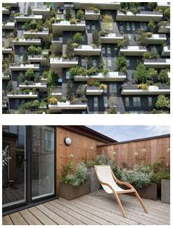 bosco verticale : skov balkon.png