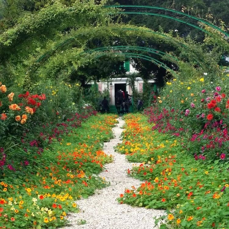fleurs-bach-grossesse-fontenay-sous-bois.jpg