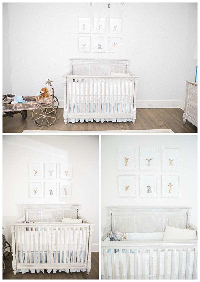 Whitney Marie Photography Blog.Shreveport Photographer. Newborn Photographer1.jpg