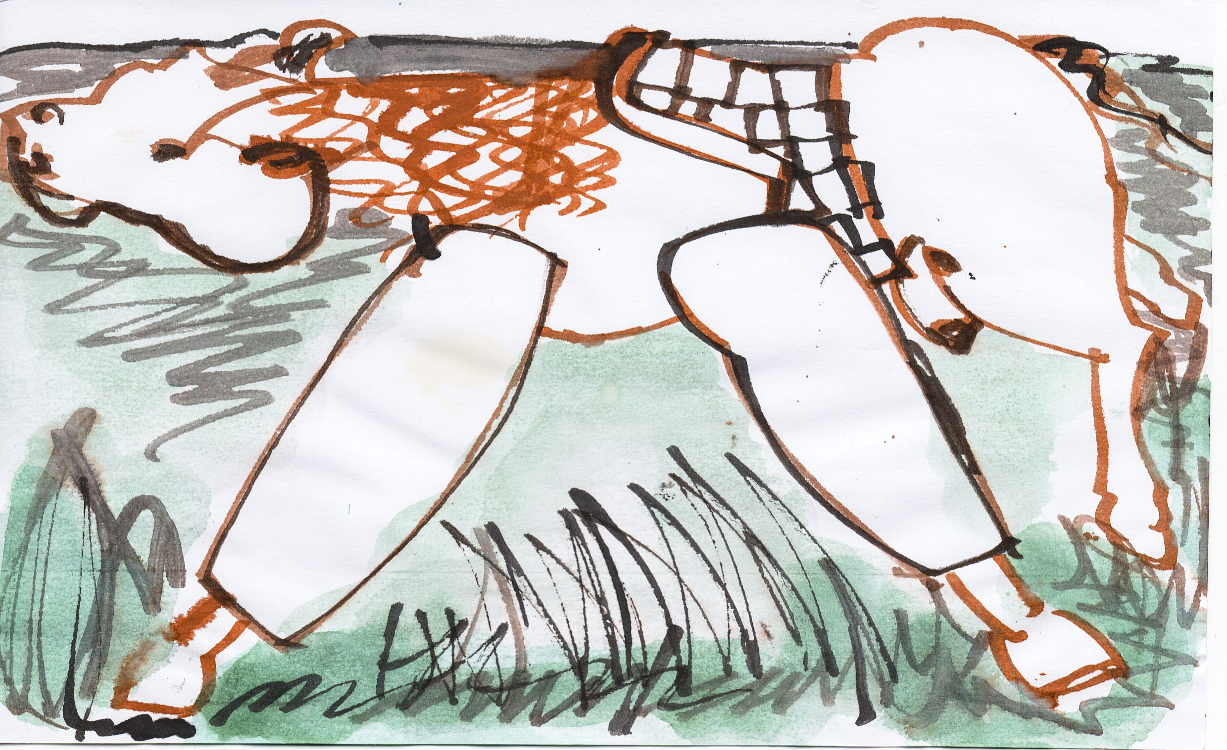 drawing_2012_horse (11 of 20).jpg