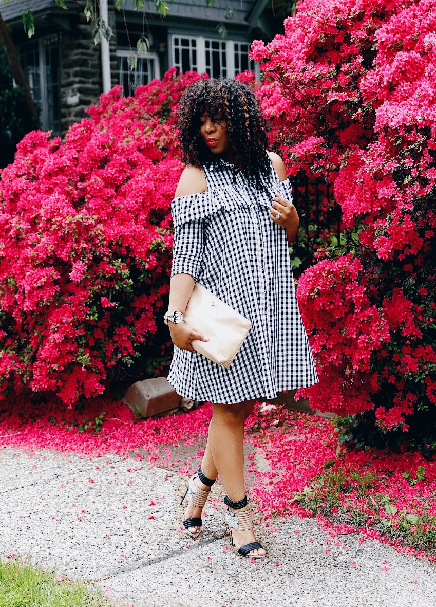 Style & Poise: Ginghm Dress