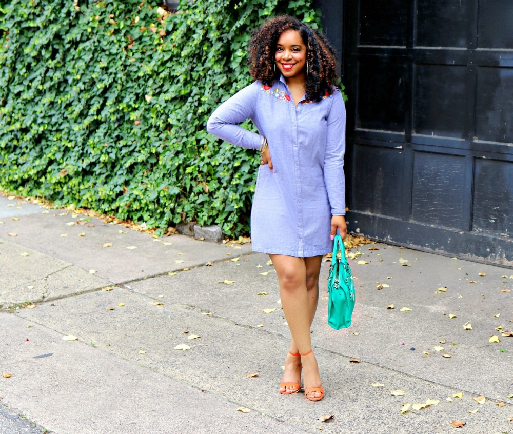 Style & Poise: Embrodiered Dress