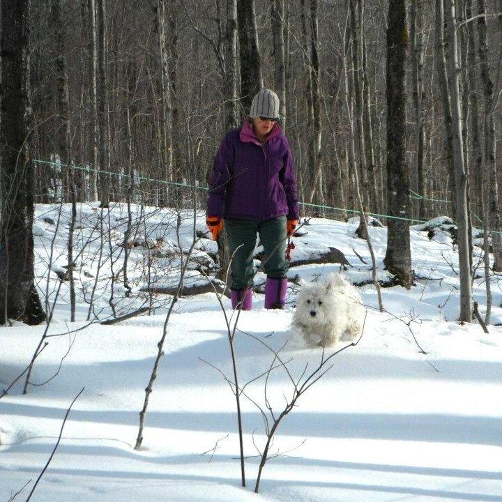 Jodi Gale and pup Luna walking through the snow in the sugar bush