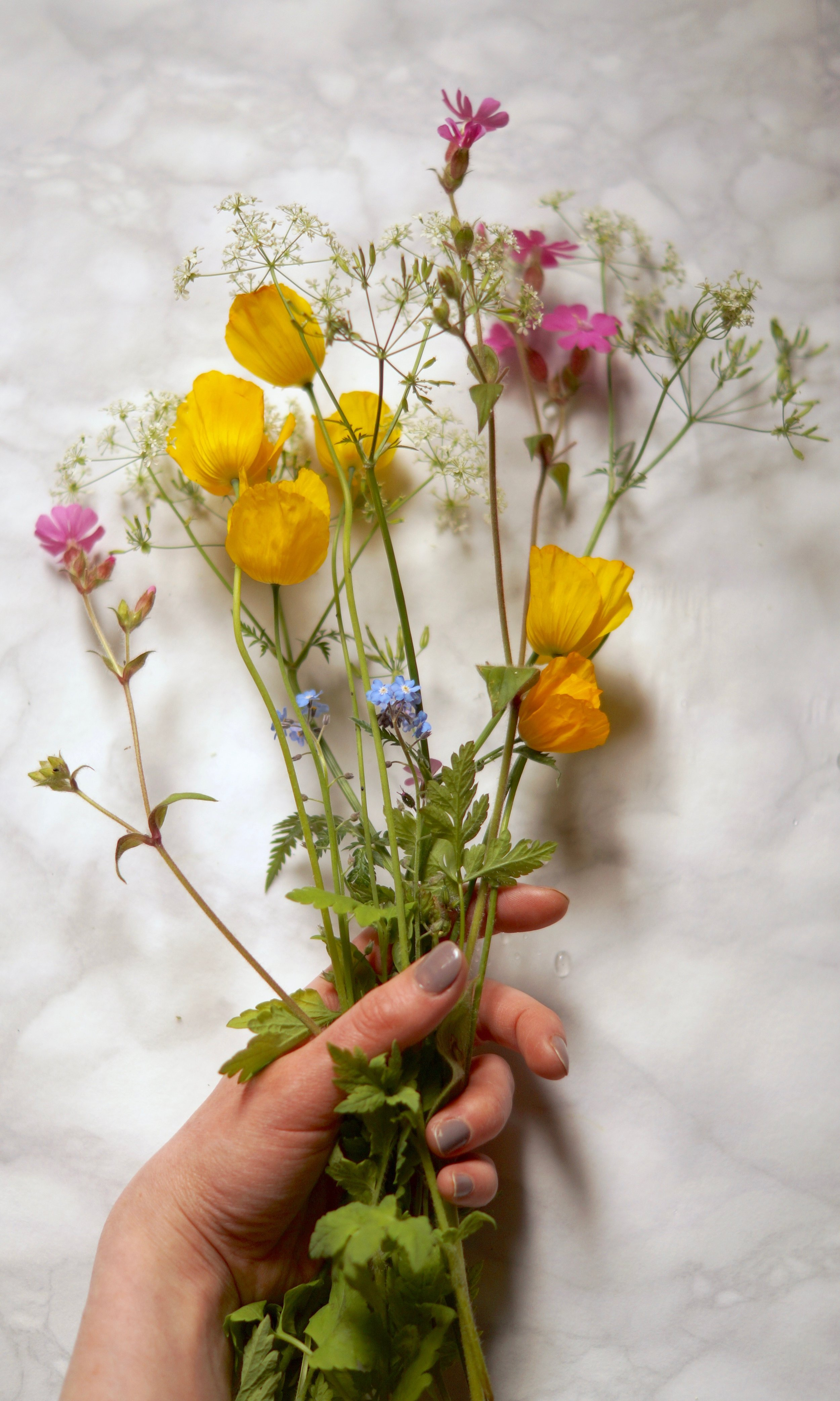 collected flowers.jpg