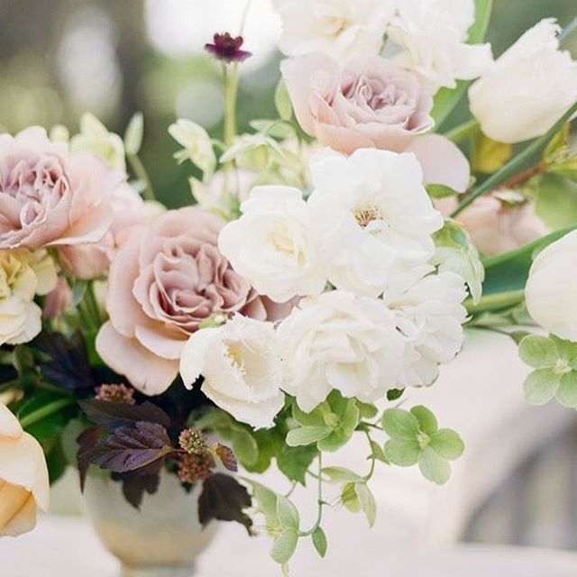 Wedding Sparrow Blog