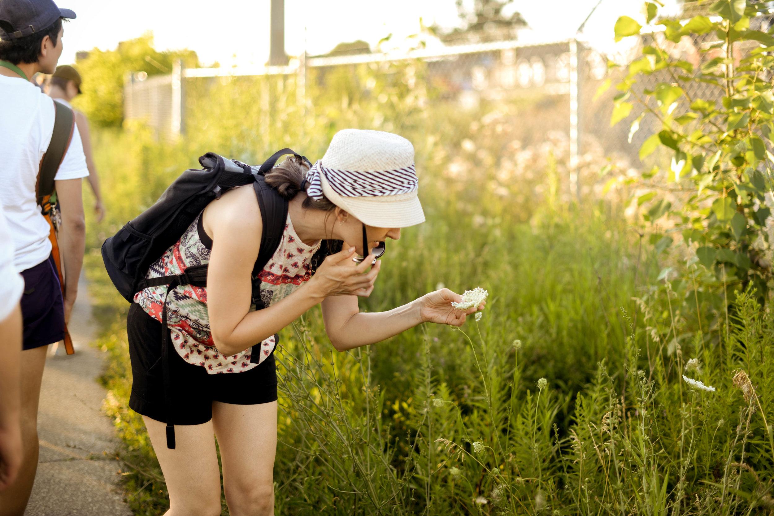RP Plant Walk-by Pauline Nguyen 6381.jpg