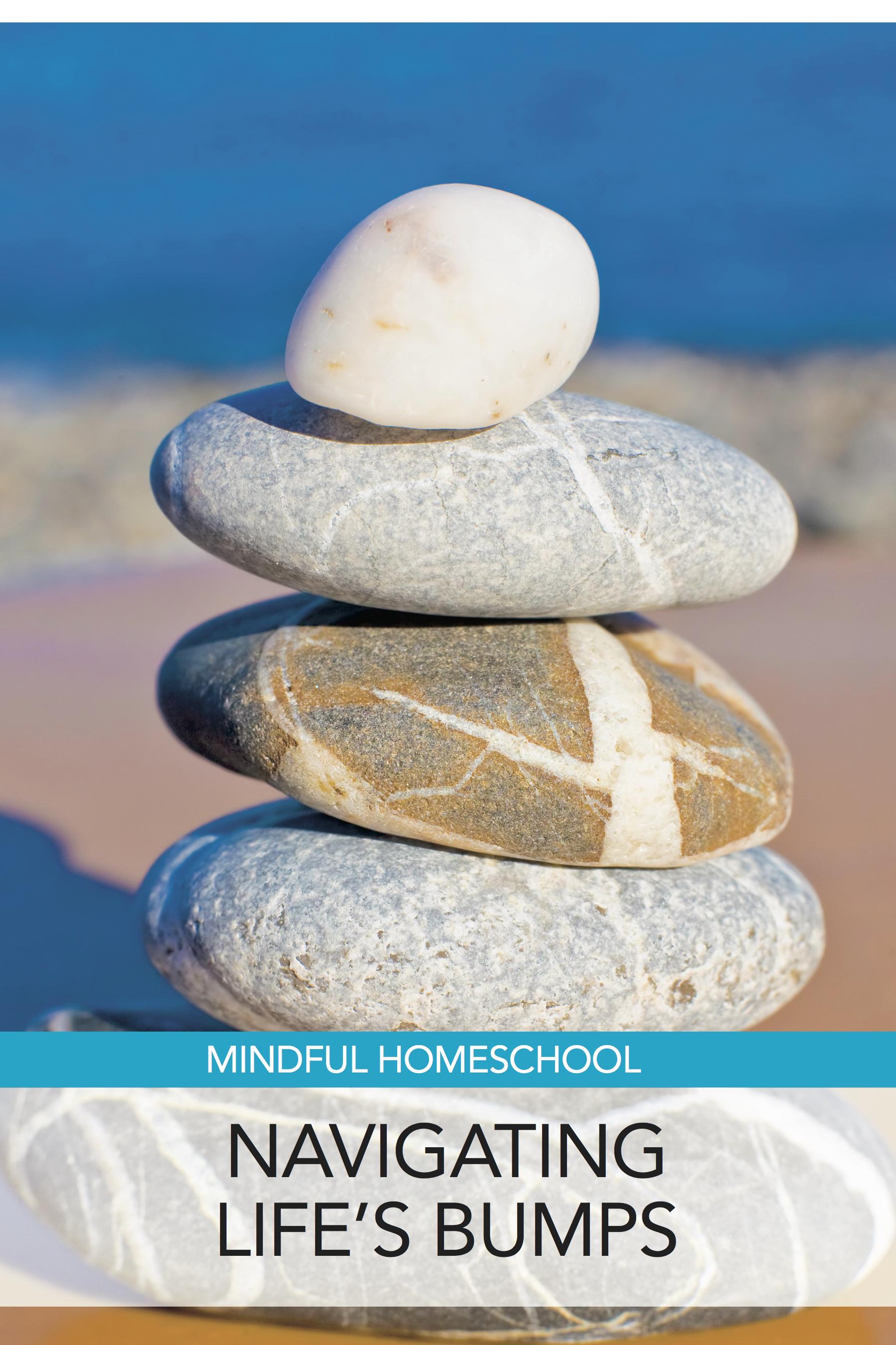 Mindful Homeschool: Navigating Life's Bumps
