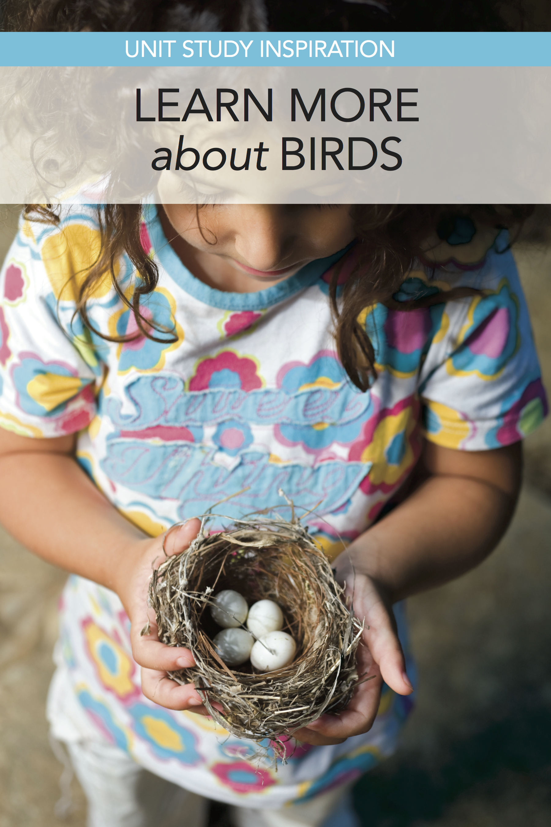 Love this roundup of books and resources for the Great Backyard Bird Hunt (in Feb.). This could be a stand-alone homeschool unit study on birds, too.