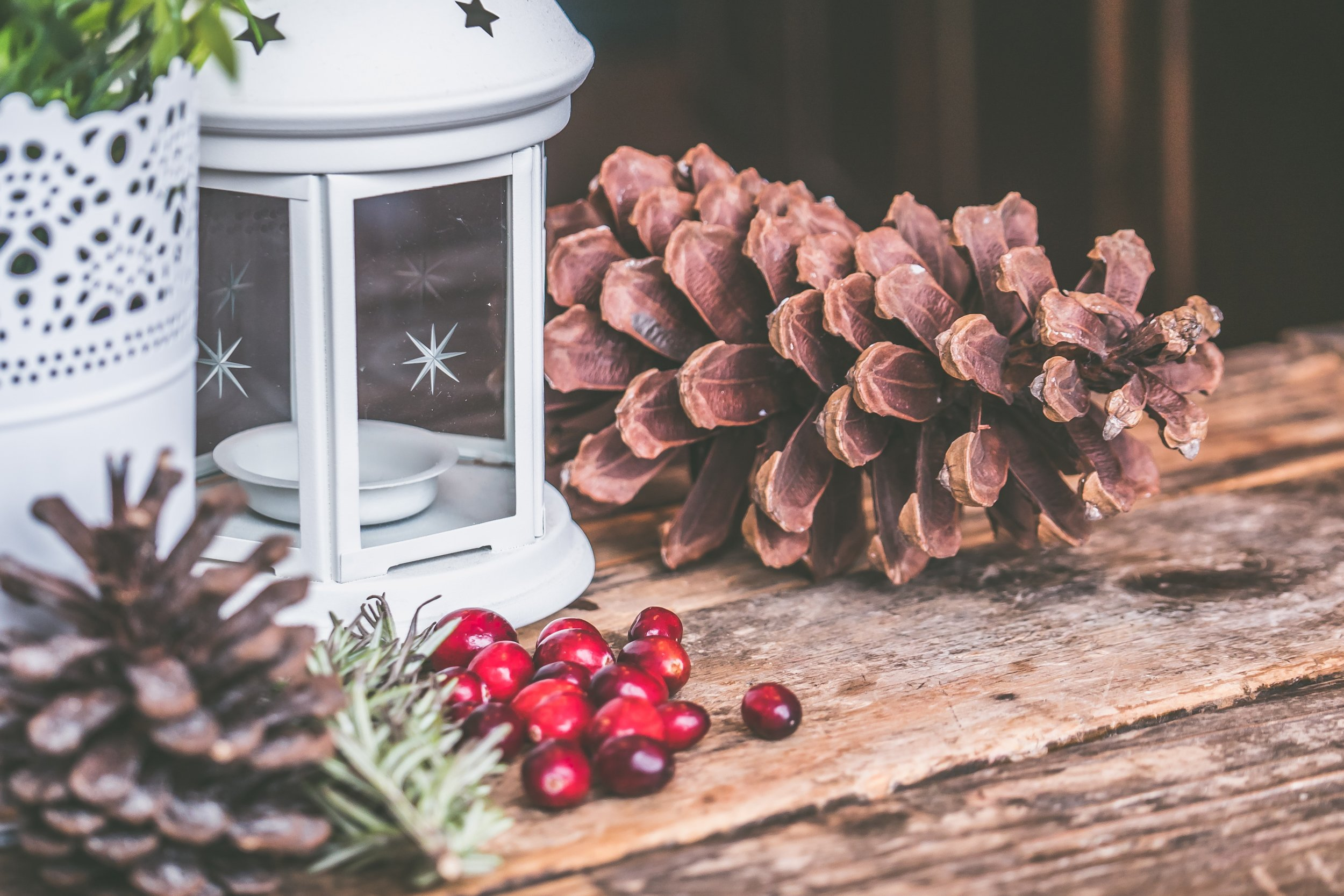 Musings on Celebrating the Winter Solstice in the Midst of Holiday Hubbub