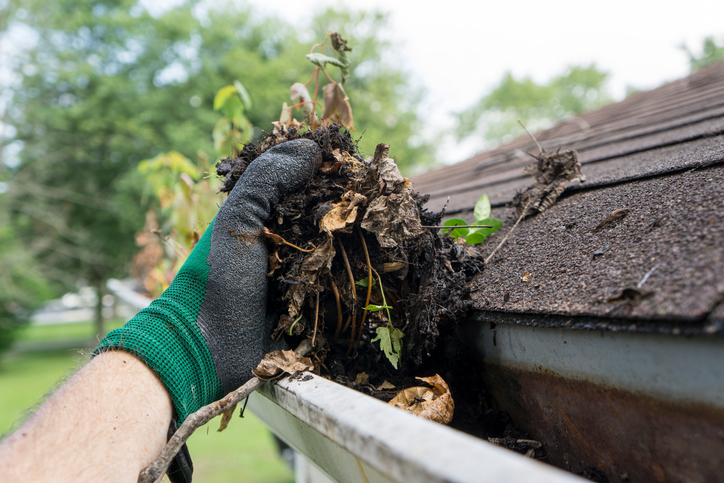 09.13 2017 - Cleaning Gutters - Fall.jpg