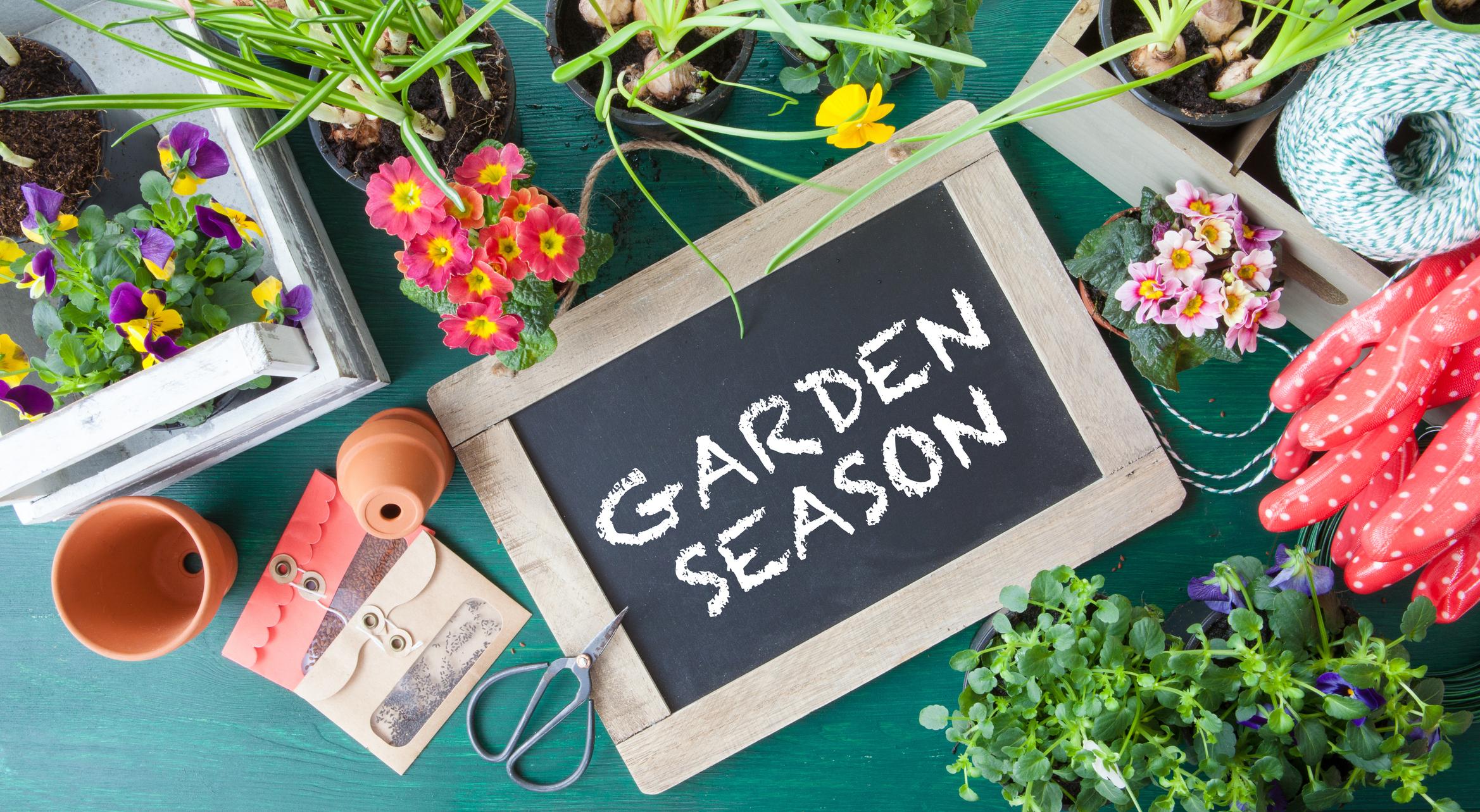 Garden Shed Season