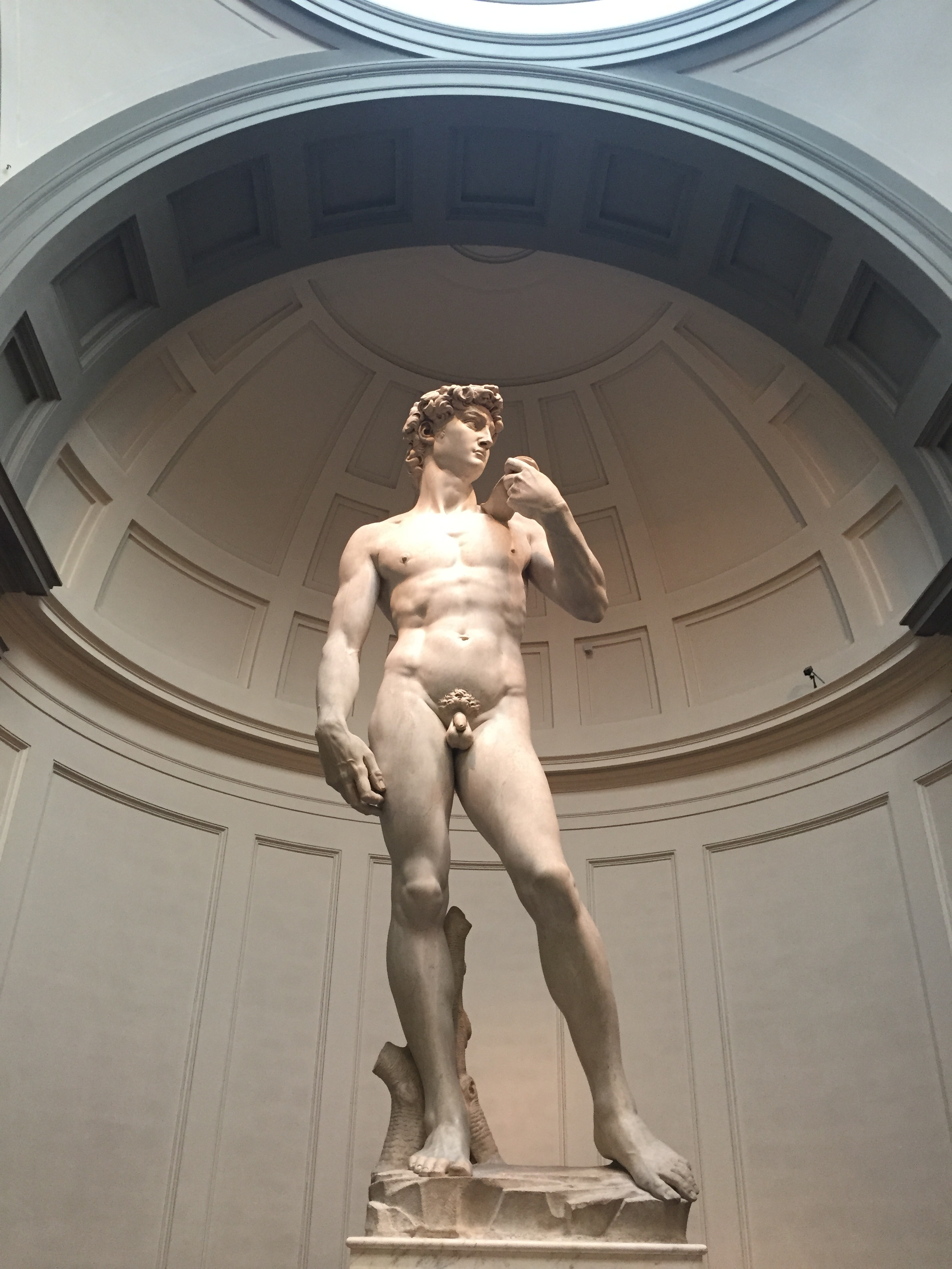 Michelangelo's David: One of the most magnificent things of all time.