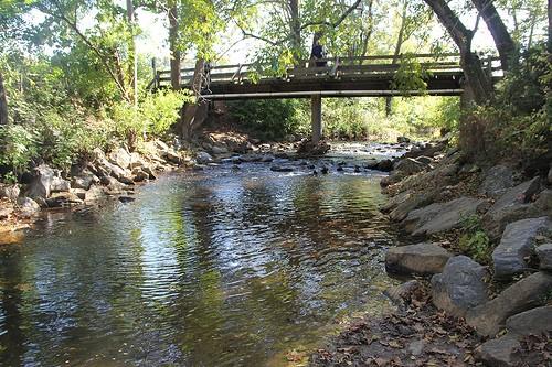 A creek at Peaks View Park