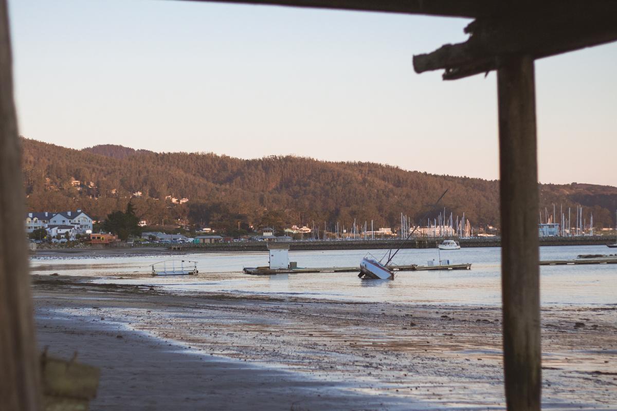 harborboatview.jpg