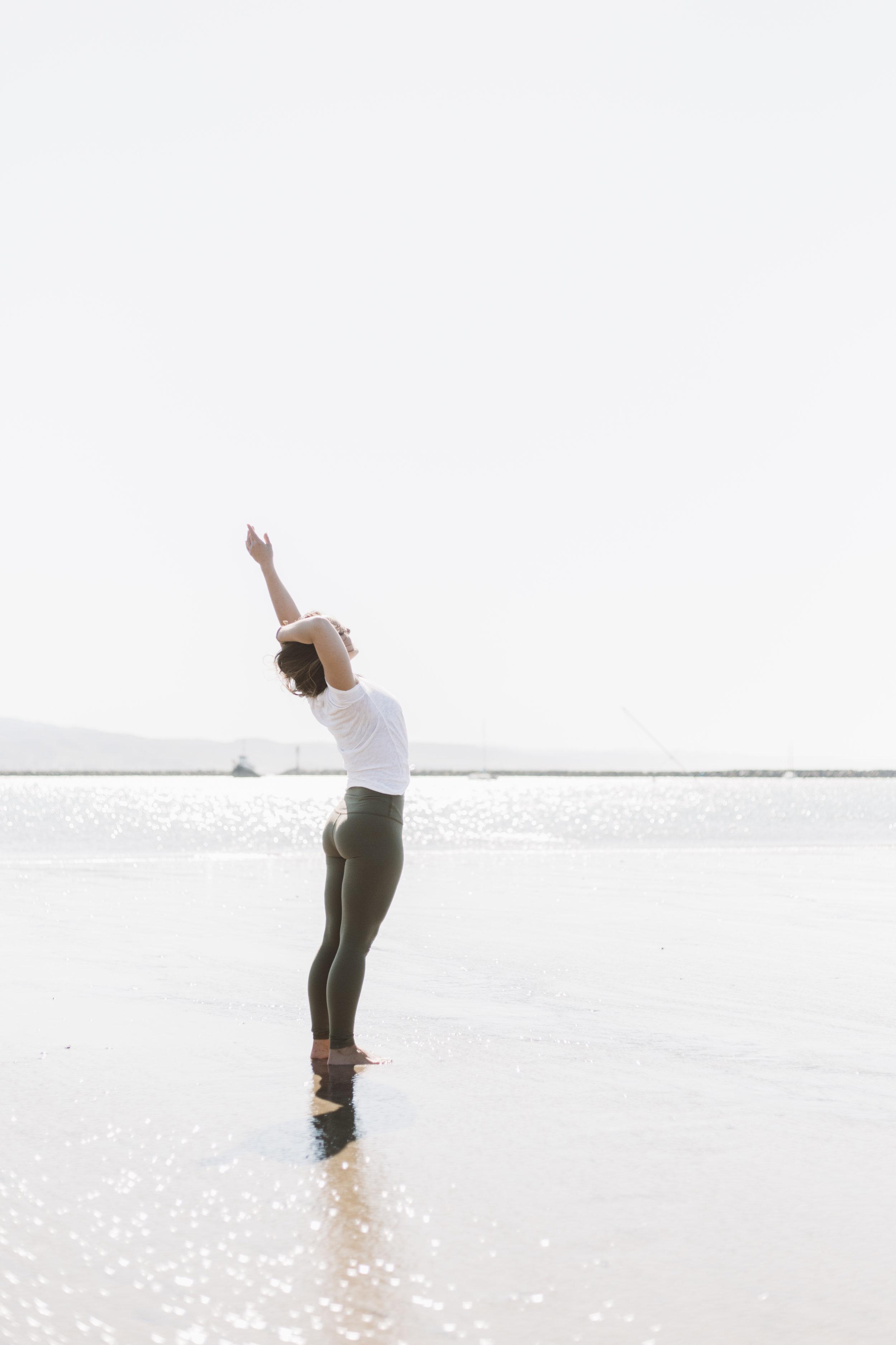 harbor yogi.jpg