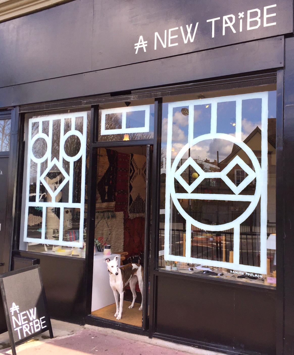 Damien Poulain Window Design