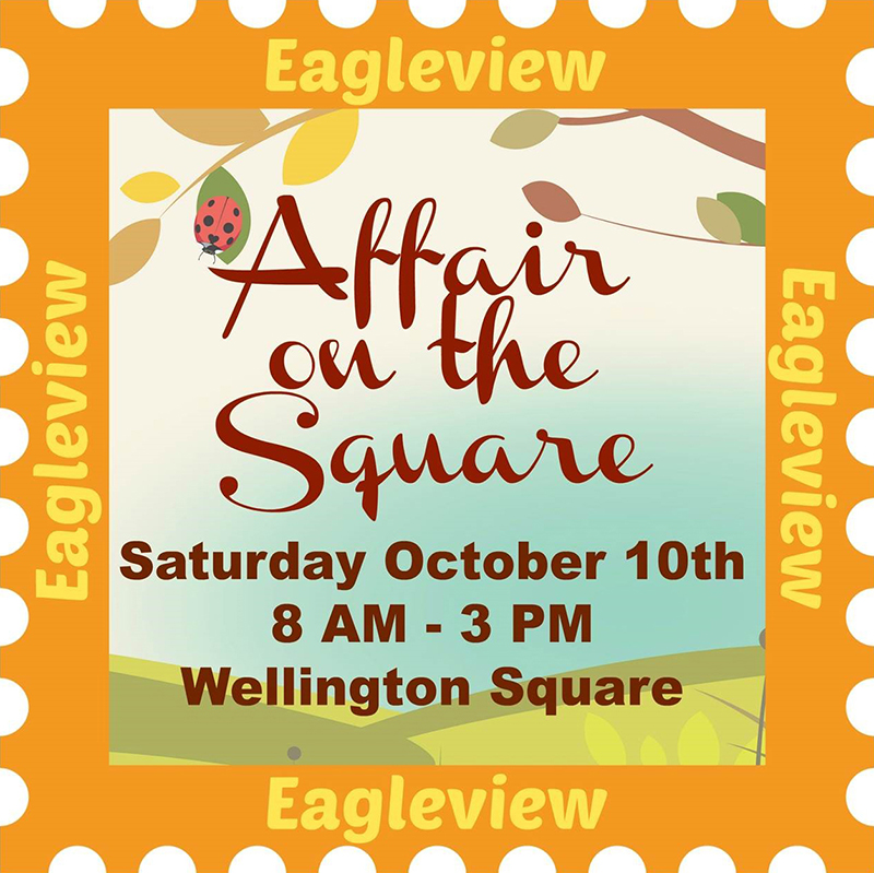 Affair-on-the-Square-logo2.jpg