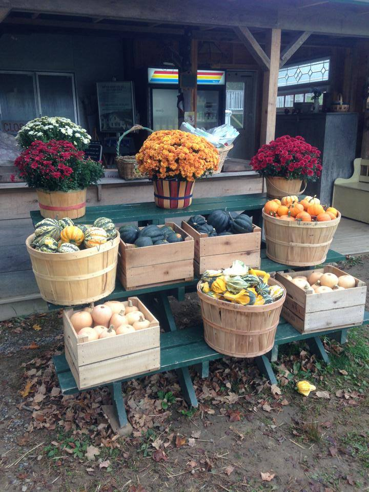 Hudson Valley Rose Hill Farm fruit stand