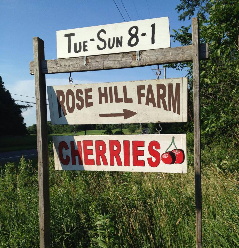 Hudson Valley Rose Hill Farm Pick Your Own Cherries
