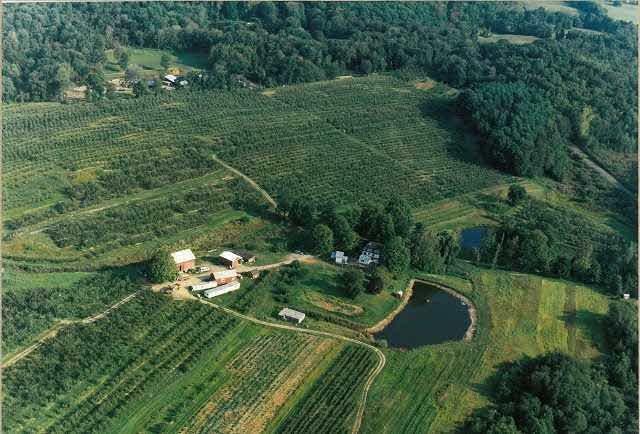 Rose Hill Farm Hudson Valley Apple Picking