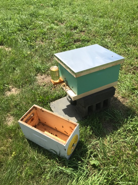 Corraling the recent swarm into temporary hive
