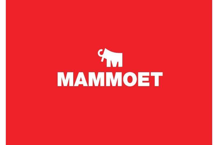 testimonial-blockSmall-mammoet.png