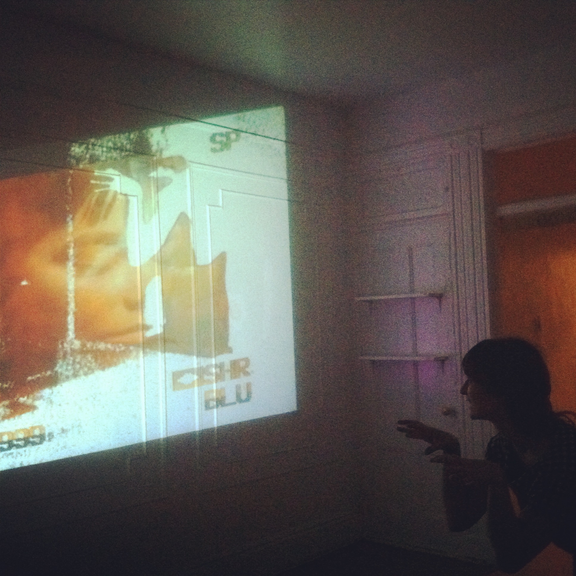 Live visuals for house party. Live camera allowed people to project their silhouettes onto wall projections.   House party // Brooklyn NY // Dec 2014