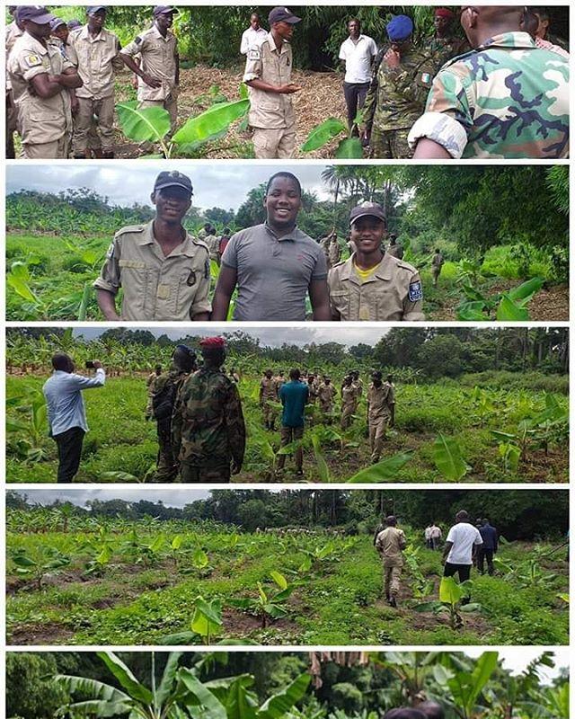 Formation Agents #SCAD #AgriHubKindia  Séance de visite des plantations de bananes des stagiaires du centre SCAD à Kindia.  #DaretoInnovate #OsezInnover #Guinee #IncubateurSocial #incubateur