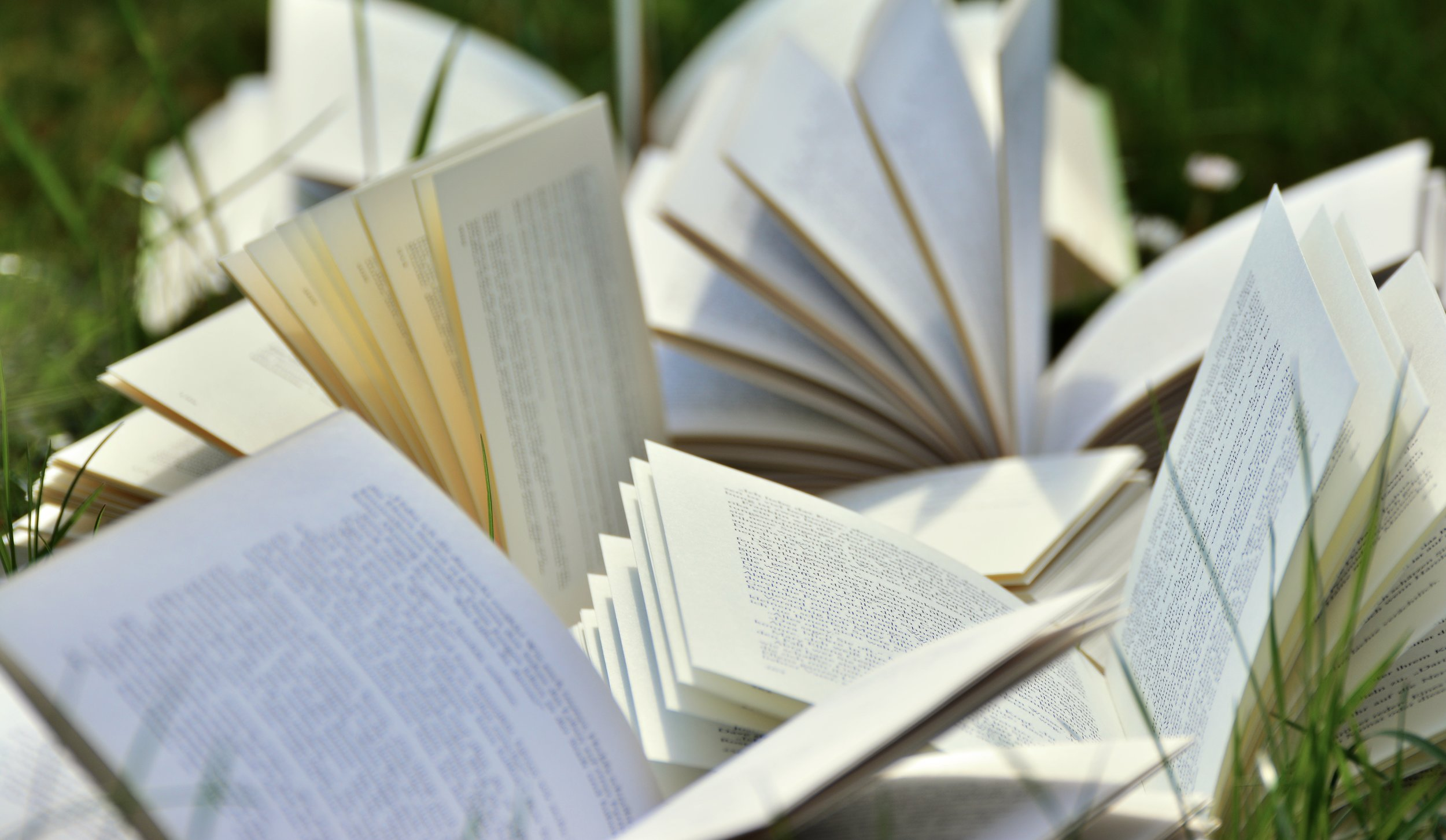 books-2241635.jpg