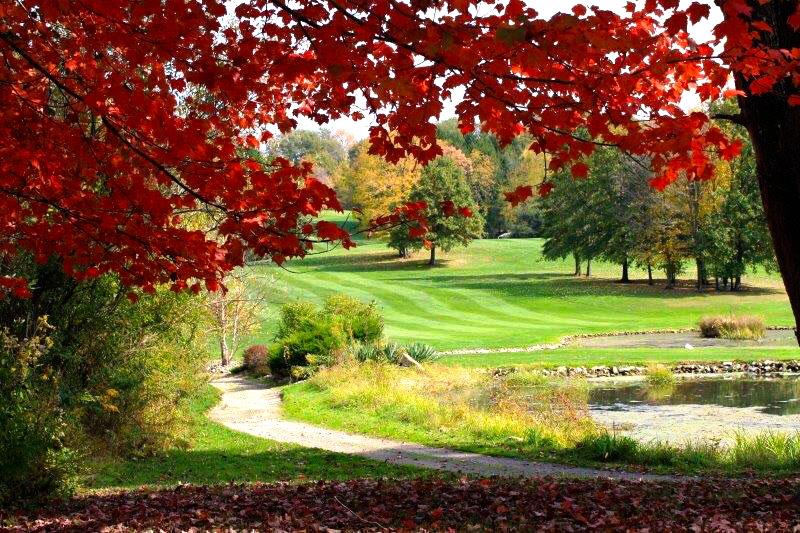 sv-pond-red-leaves.jpg