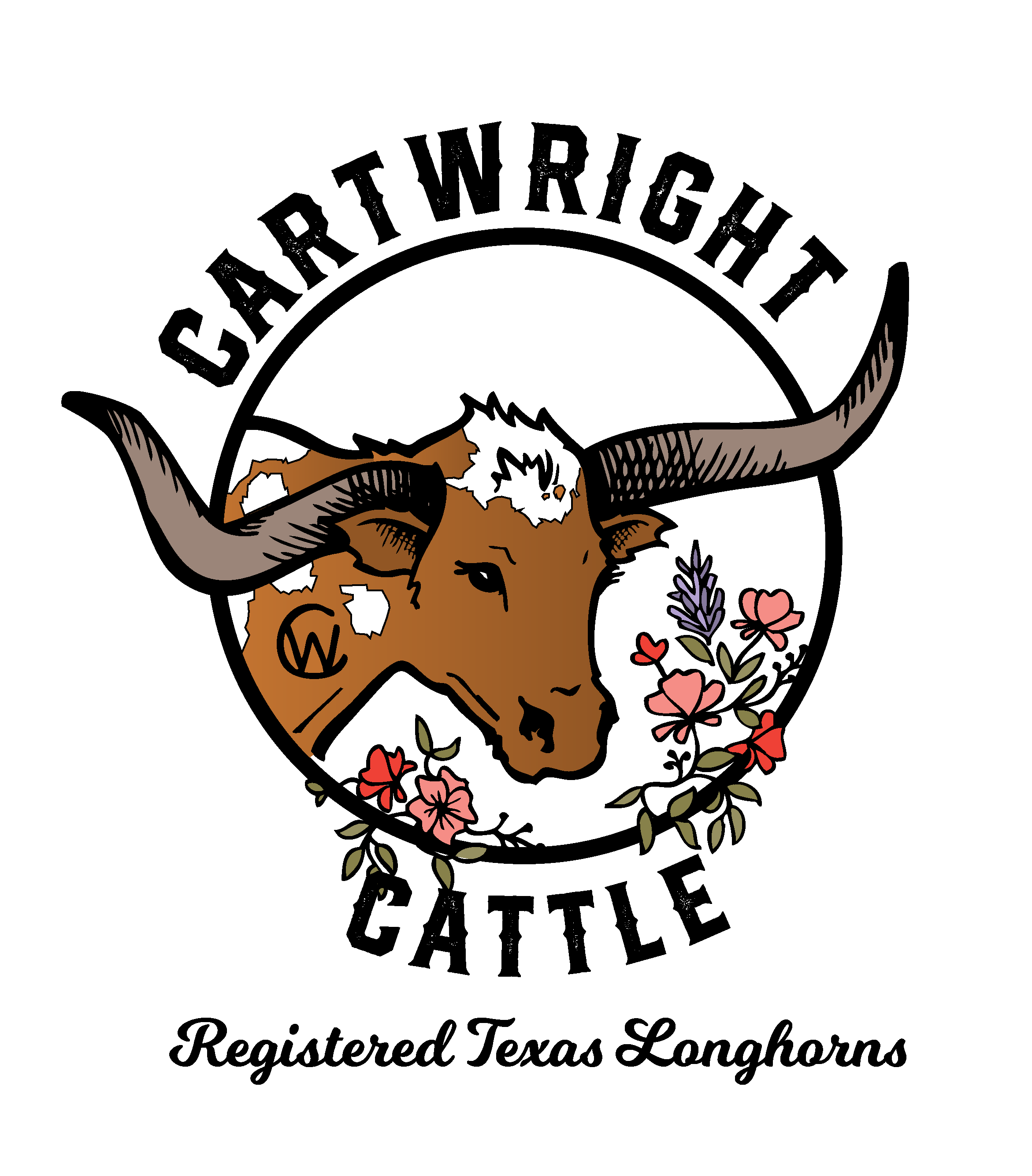 cartwrightcattle_transparent-10.png