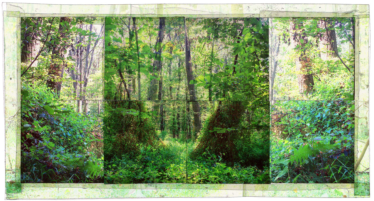 """GAMBRILL SP, 1   • 30""""x 17"""" • GICLEE PRINT FROM TRANSPARENCY FILM COMPOSITION"""
