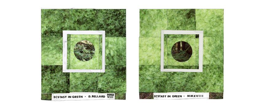 Ecstasy in Green arrangement.jpg