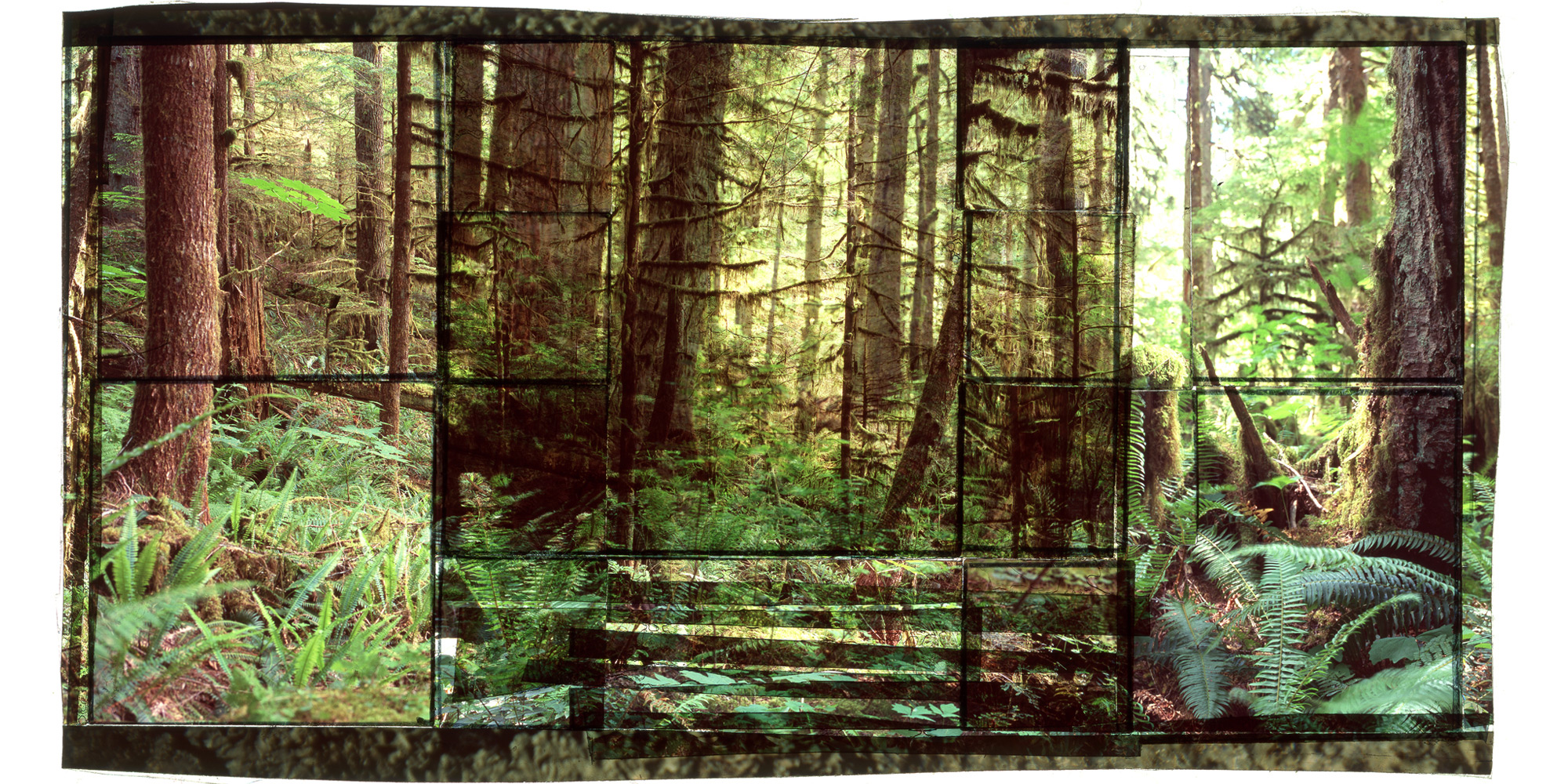 """TIGER MOUNTAIN SF, 1   • 30""""x 17"""" • GICLEE PRINT FROM TRANSPARENCY FILM COMPOSITION"""