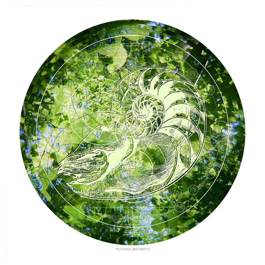 Plitvice Botany 3 postcard web.jpg
