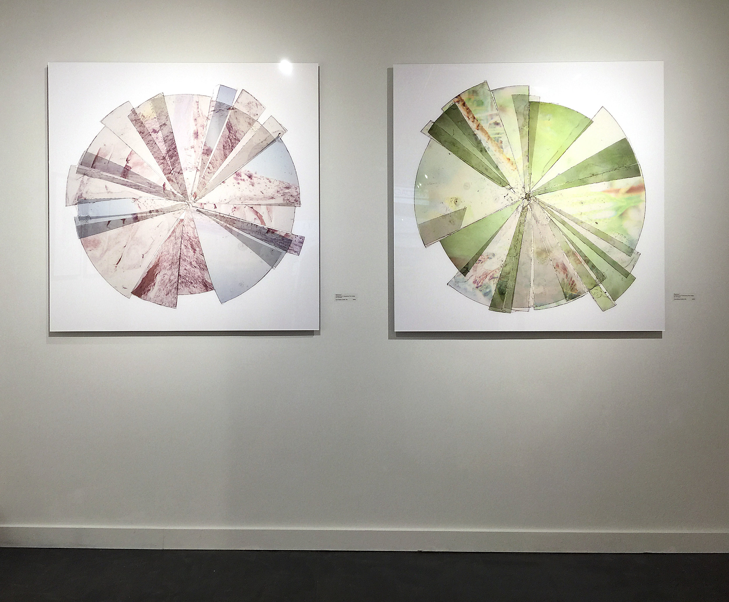 Radiance 1  and  Radiance 5 , installation shot from Galley 110, Seattle, WA