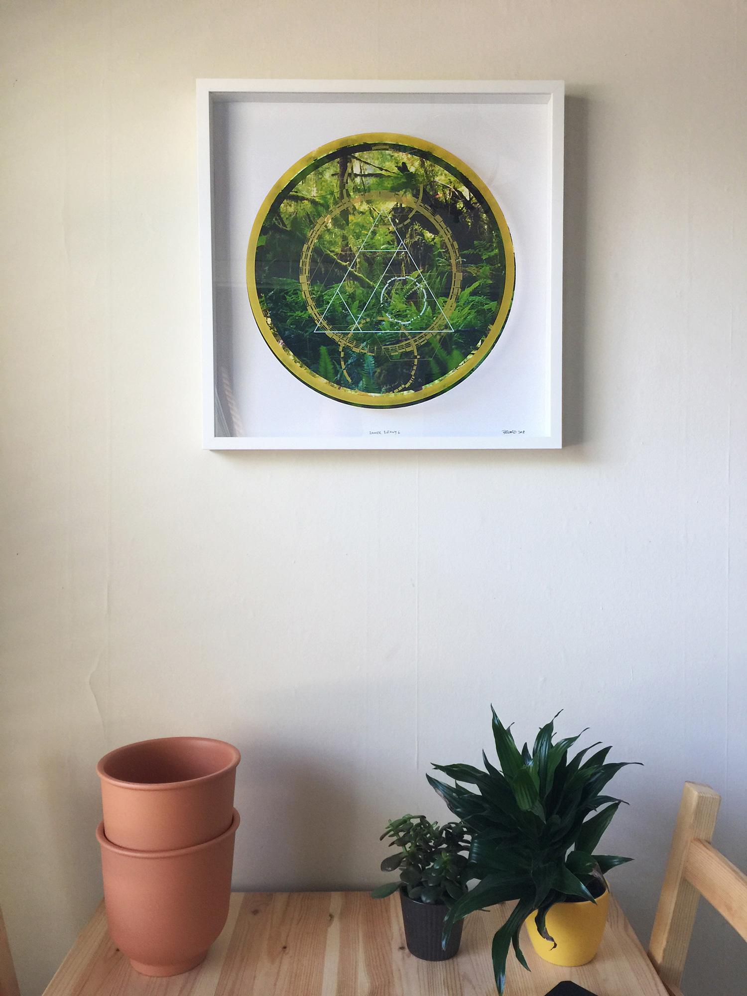 Rainier-Botany-6-on-wall.jpg