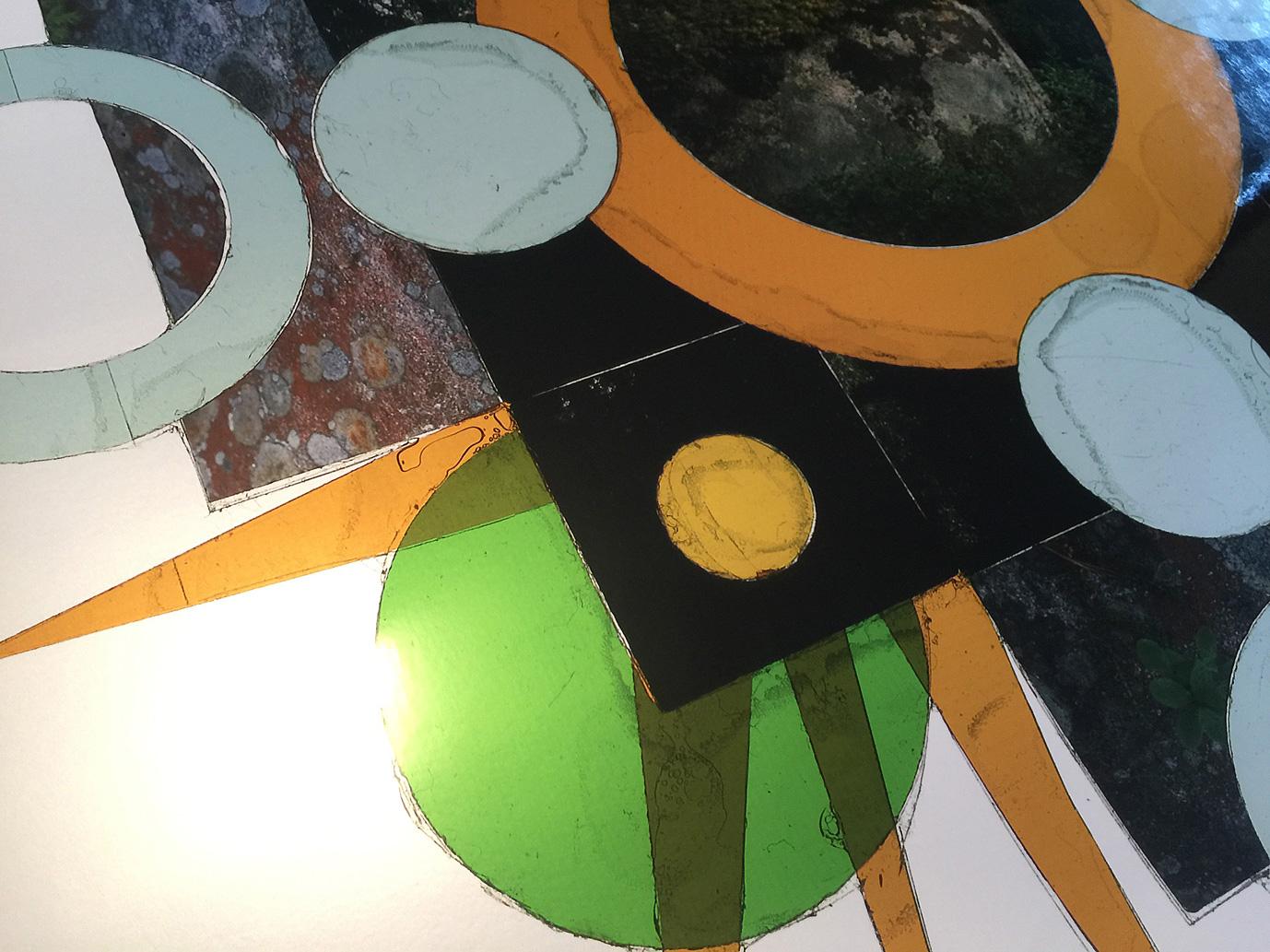 "Detail, Regalia of Nature,3  , Transparency film printed at 30""x30"", archival pigment on fuji metallic"