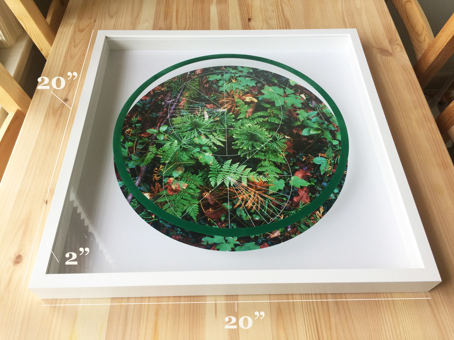 Rainier-Botany-1-detail-table-with-numbers.jpg