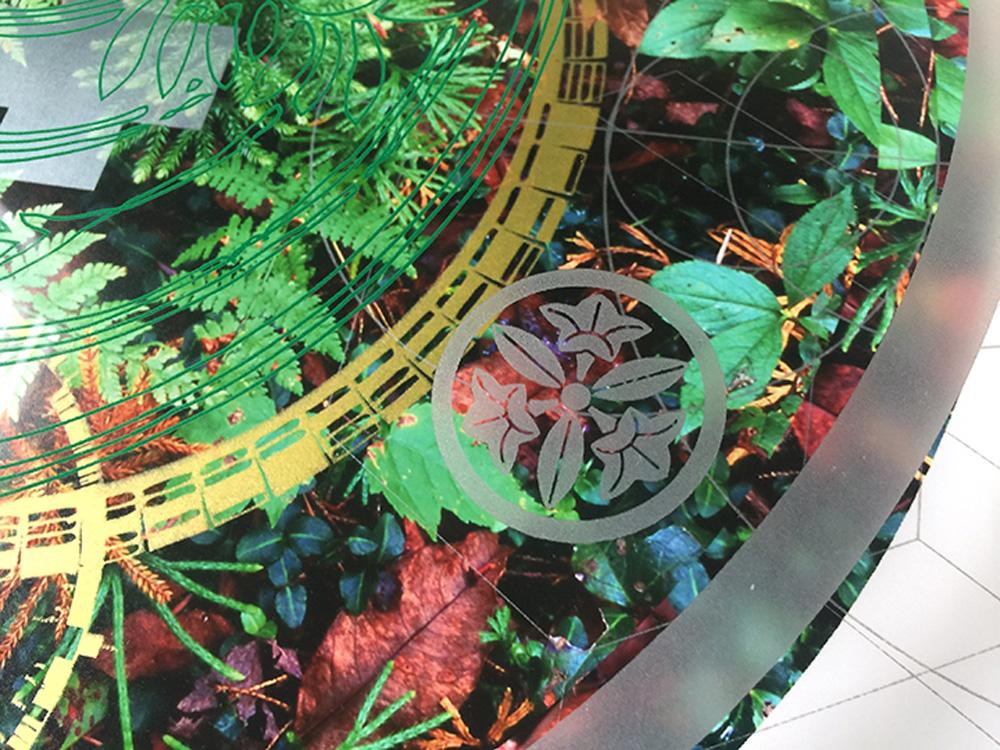 Rainier-Botany-new-8-5.jpg