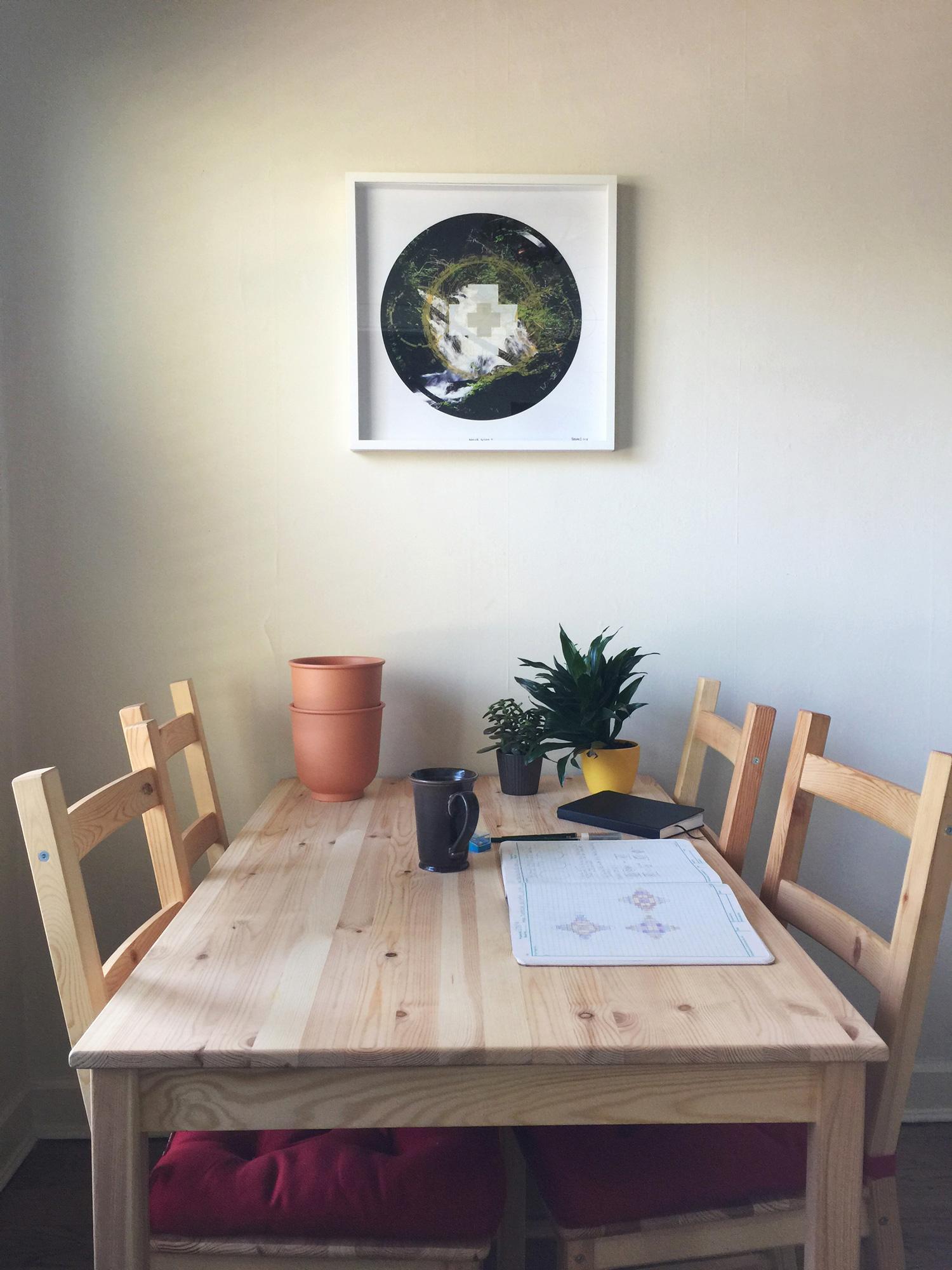 Rainier-Botany-9-on-wall.jpg