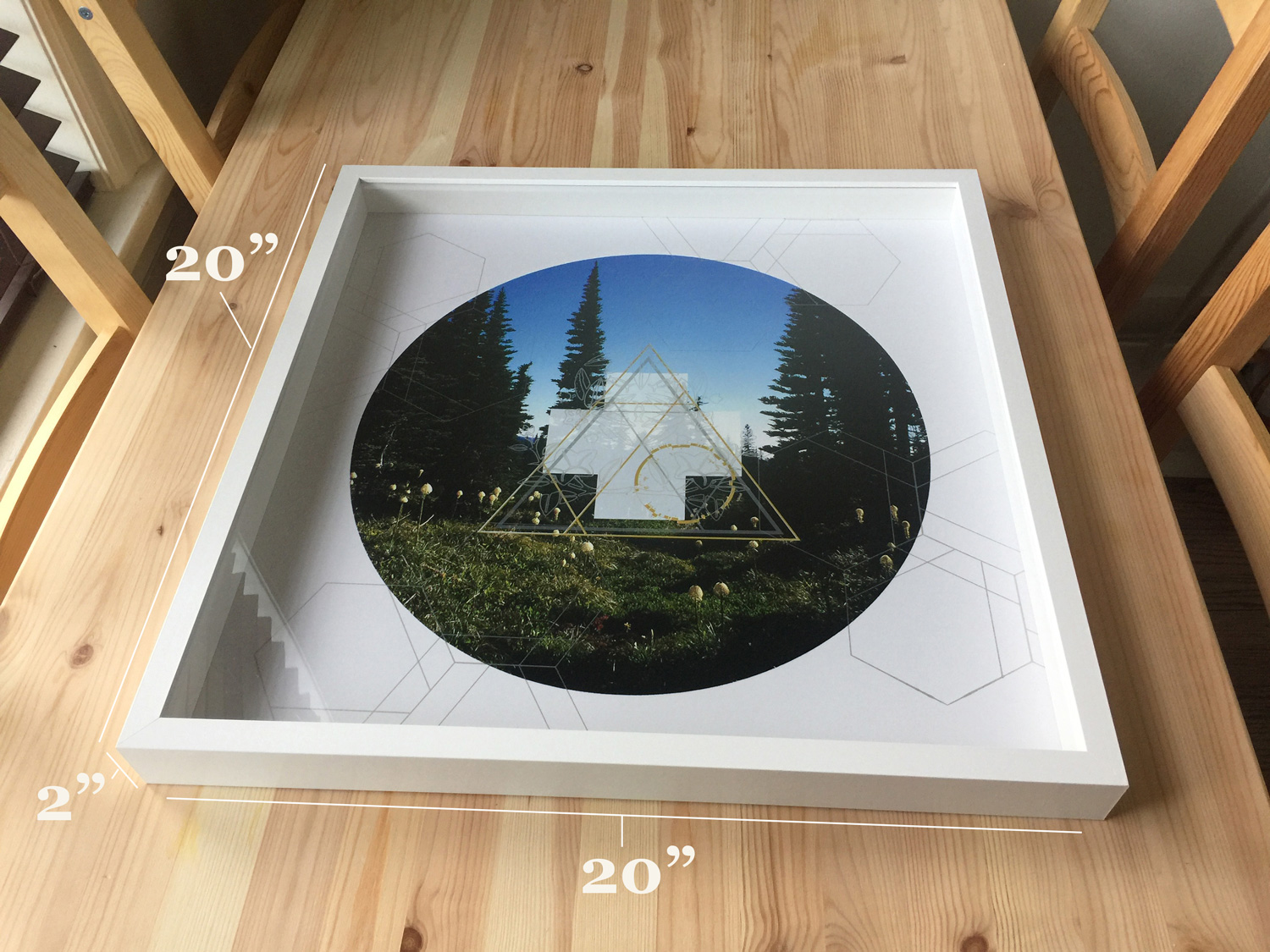 Rainier-Botany-10-detail-table-with-numbers.jpg