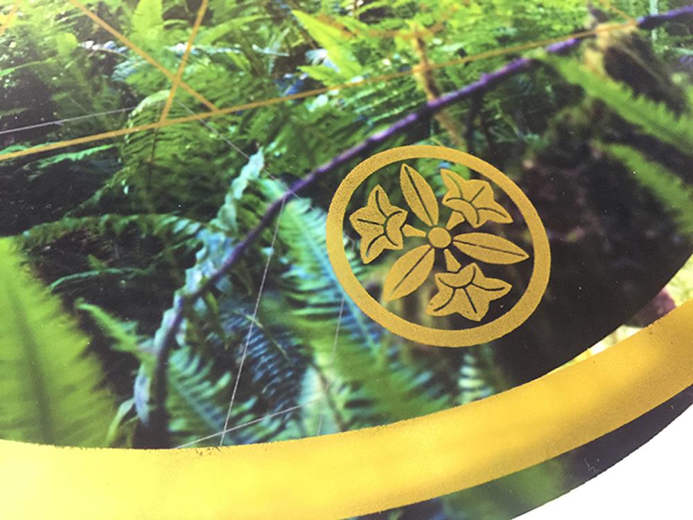 Rainier-Botany-new-11-6.jpg