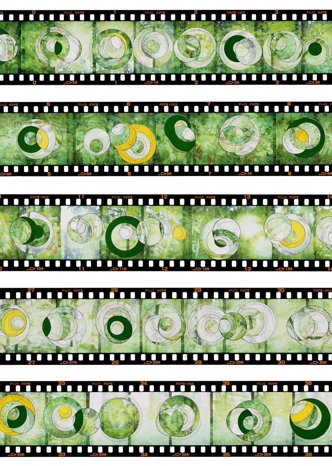 """VERDANT PHASES IN MINOR"", TRANSPARENCY FILM PRINT, 20""x28"" - 2018"