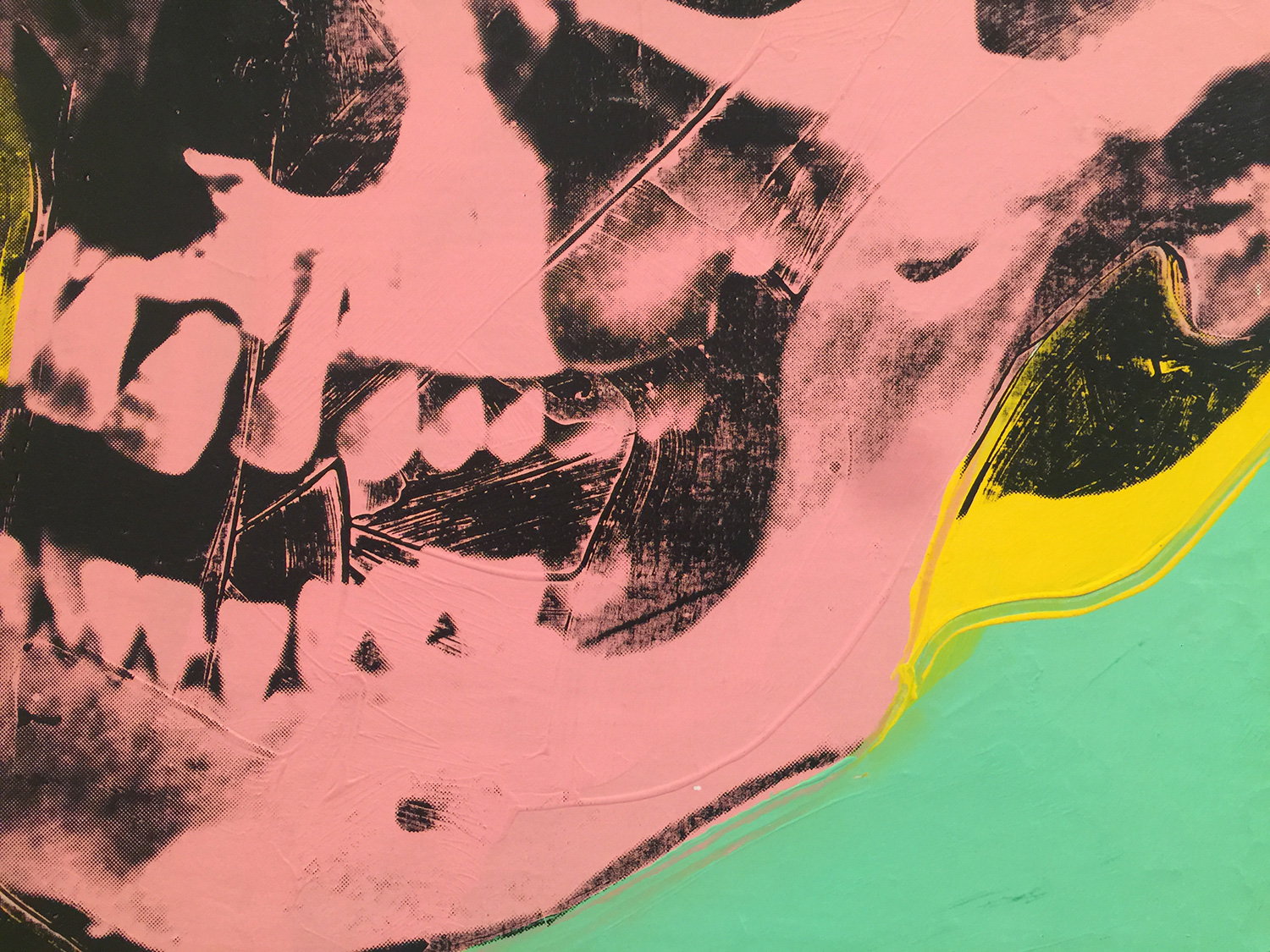 Detail from   Skull  , 1976, Andy Warhol.