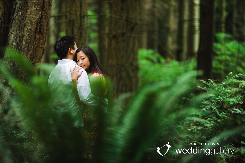 engagement-photo-yaletown-wedding-gallery-stanley-park-forest-fern-photo.jpg