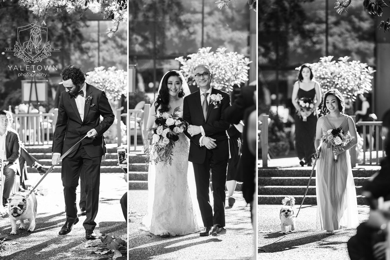 rooftop-garden-wedding-ceremony-four-seasons-hotel-vancouver-wedding-yaletown-photography-photo-27.jpg