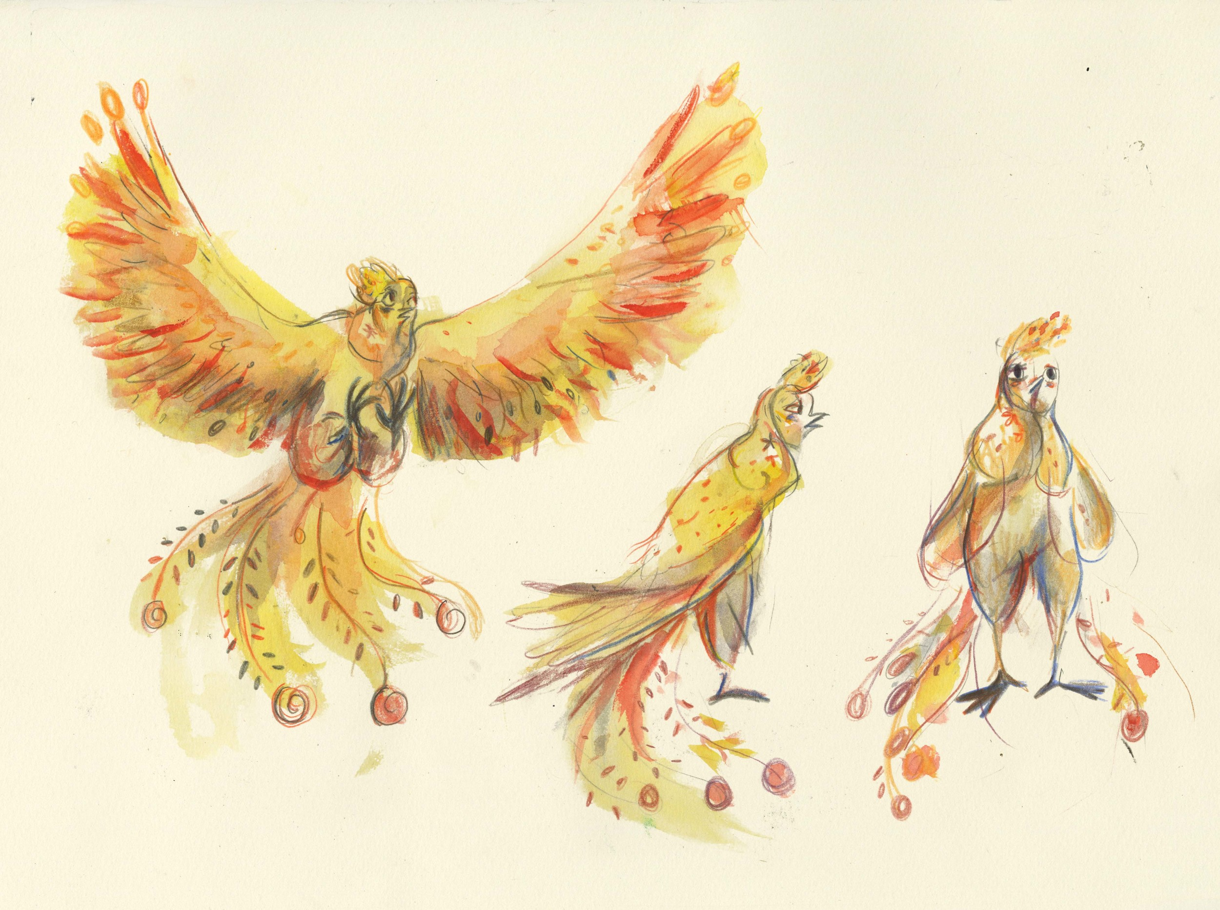 Character designs for the Russian Firebird in 'Ivana and the Firebird'