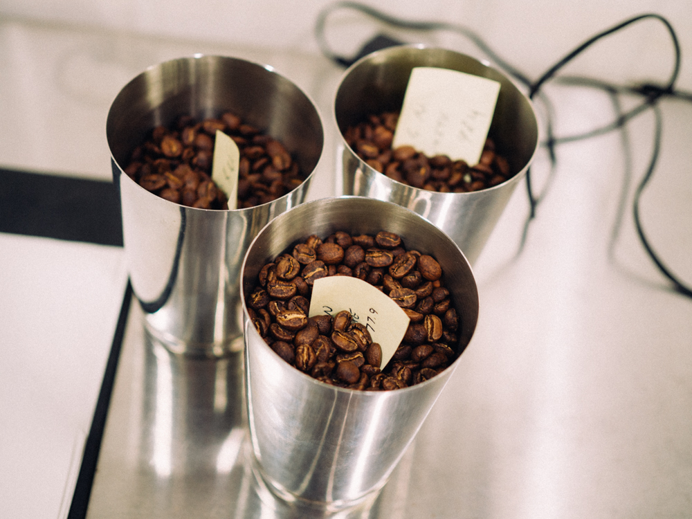 A sample from varying roasting times is taken for tasting.